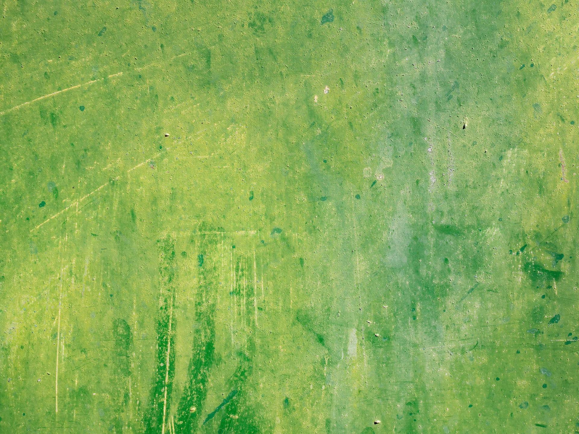 eala-art